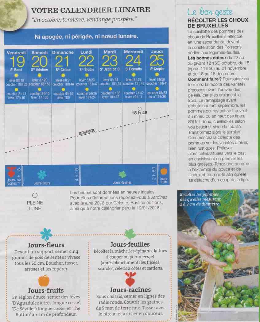 votre calendrier lunaire de la semaine - Page 2 Y11