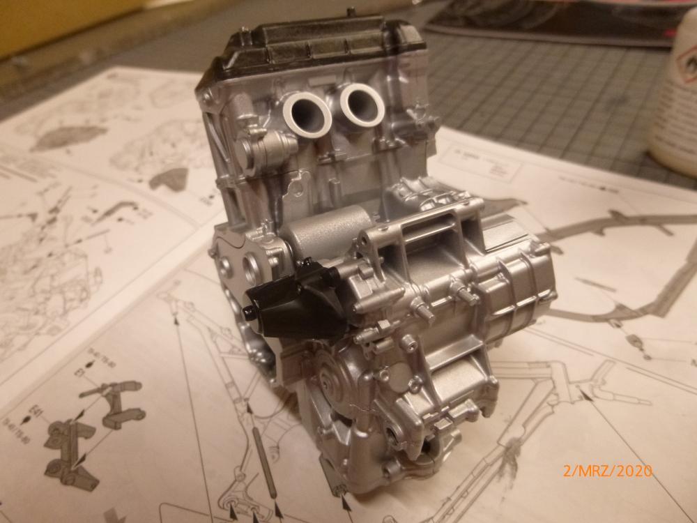 Honda CRF1000L Africa Twin Tamiya 1:6 geb. von Millpet P1110545