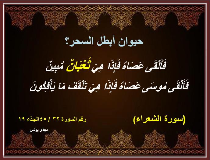اسئلة دينية والاجابة عليها بالقران الكريم Ooa10