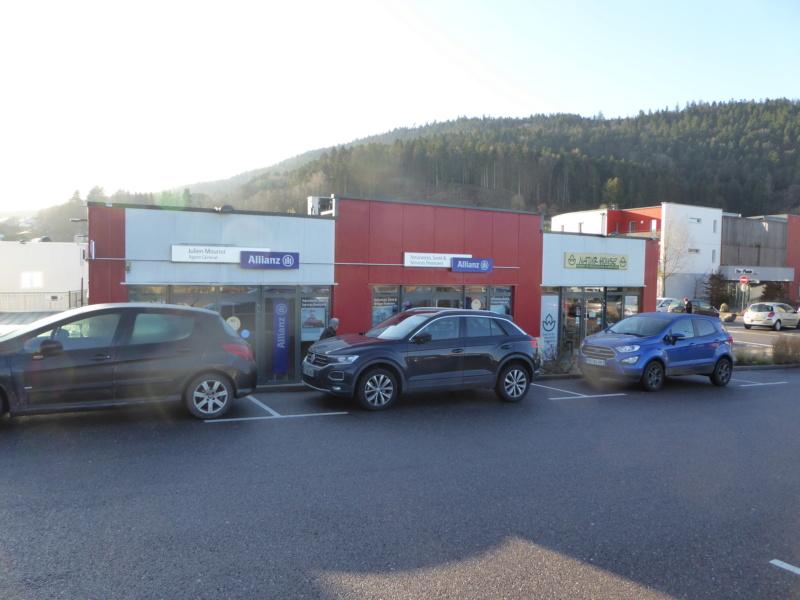 Eco Quartier de la Madeleine à Remiremont - Page 9 P1010417