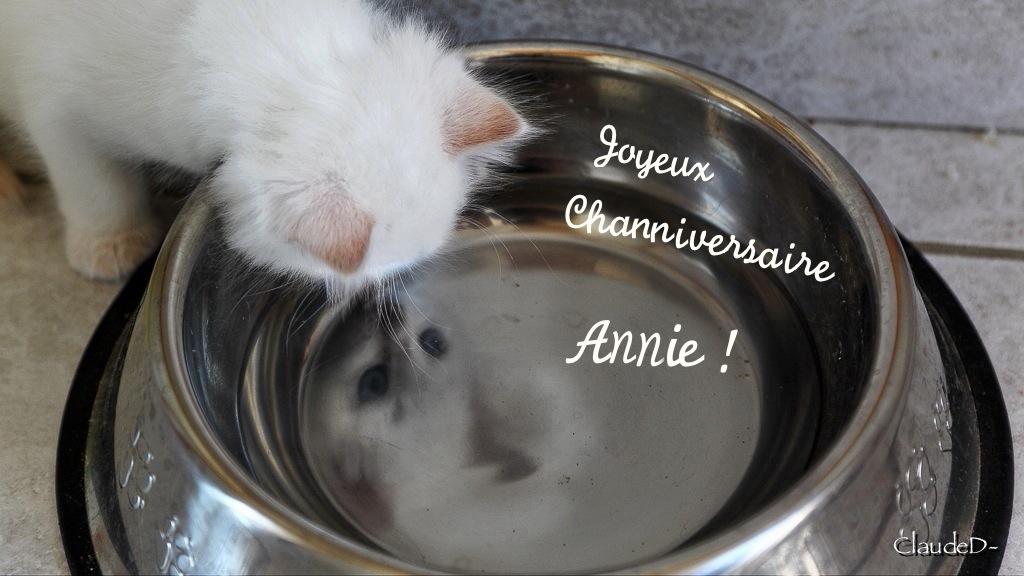 C'est son jour . . . . Ninie !  Aninie11