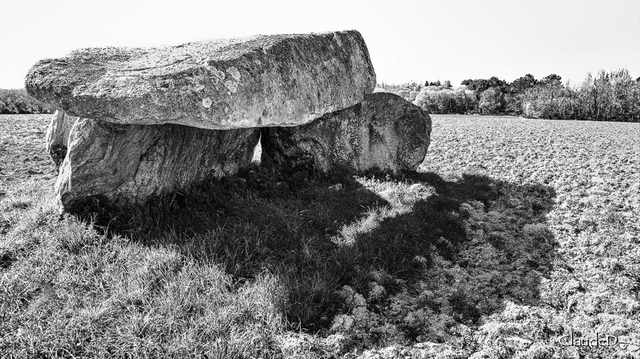 Dolmen de Kervin Brigitte à Crac'h (56) Kerv610