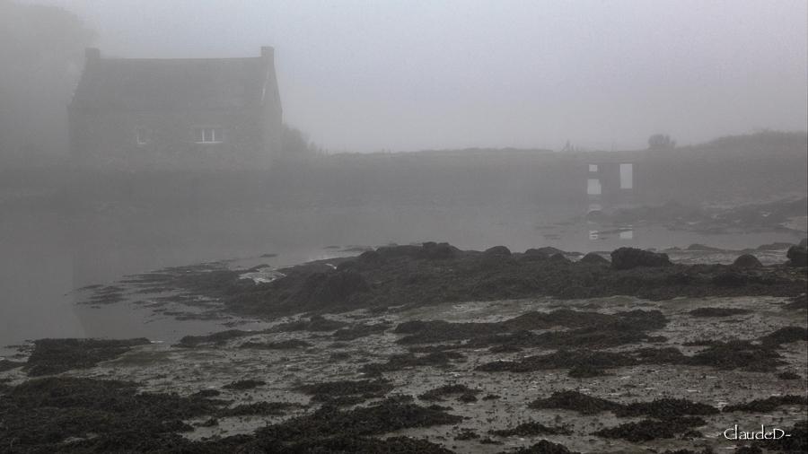 Brouillard du jour... Loc314
