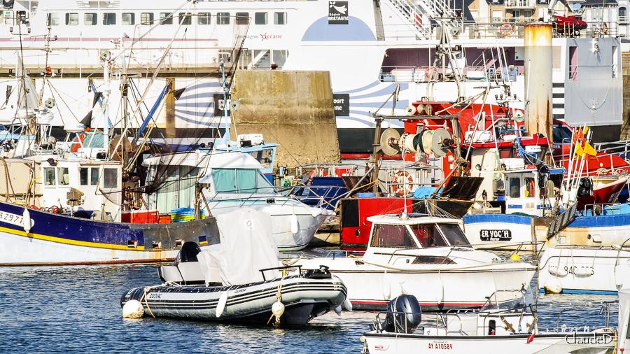 Port Maria à Quiberon - Page 2 Quibpm18