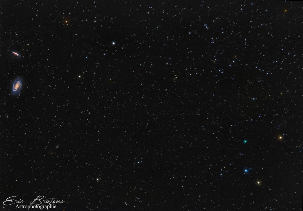 Comète Atlas C-2019 Y4  20-310