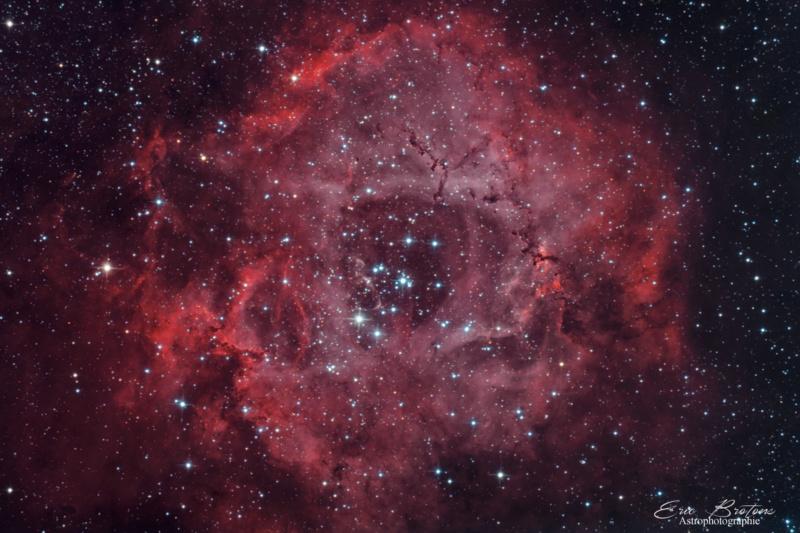 Neb de la rosette NGC 2244 HA RVB Q-210