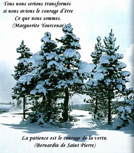 citation du jour/celebres et images de colette - Page 13 Ce_que12