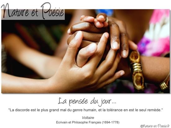 citation du jour/celebres et images de colette - Page 13 La_dis10