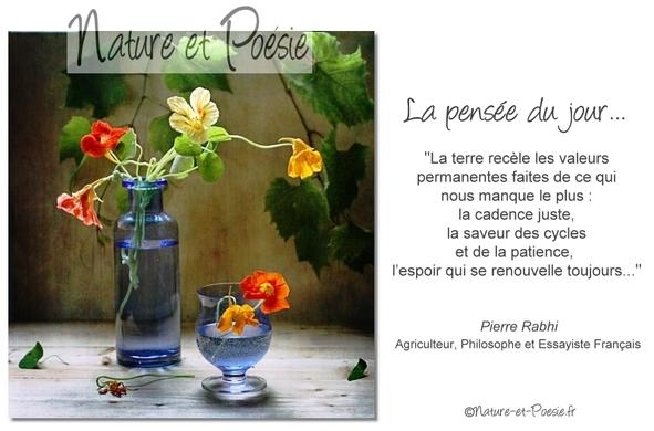 citation du jour/celebres et images de colette - Page 13 La_ter10