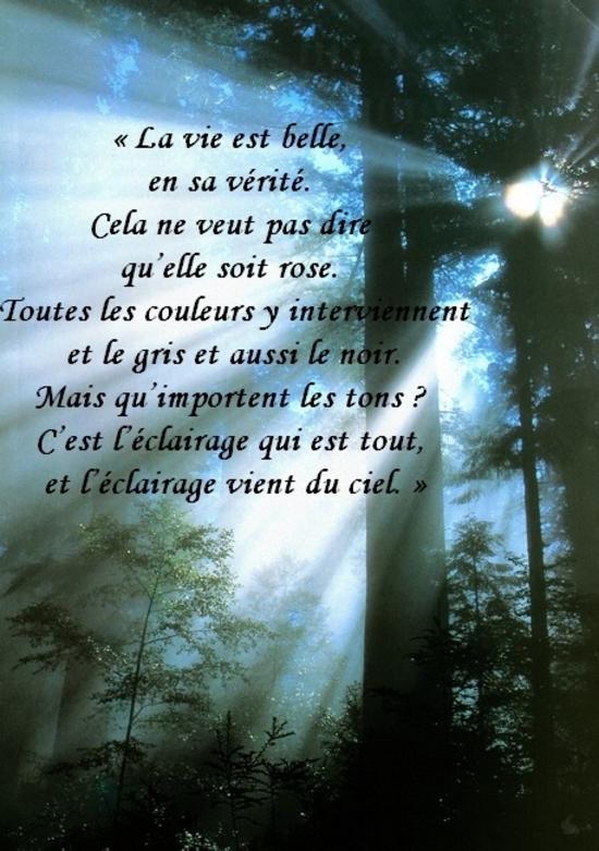 citation du jour/celebres et images de colette - Page 13 La_vie14