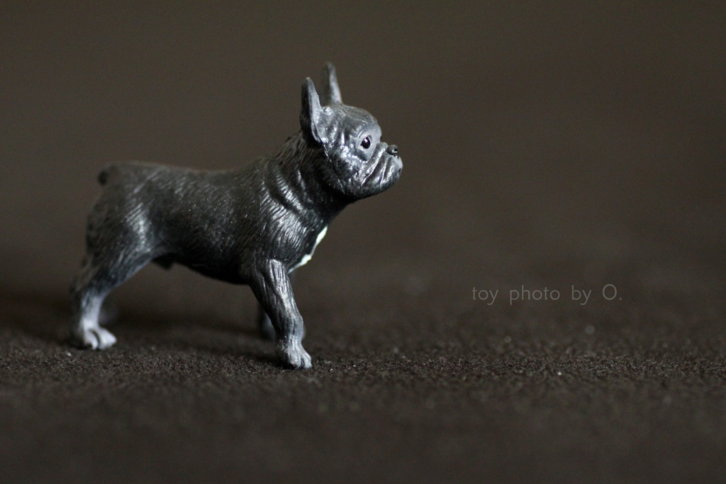 Bullyland setter and frenchie Bully_13