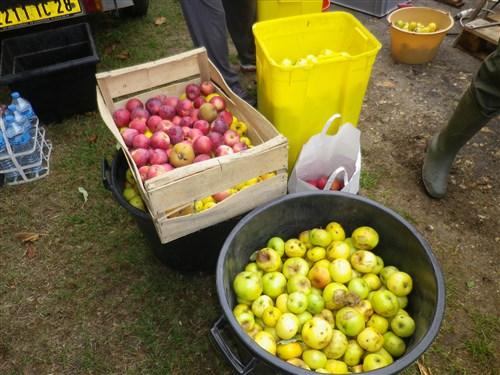 Fête de la Pomme à Chenicourt (28), dimanche 4 novembre 2018 Imgp5511