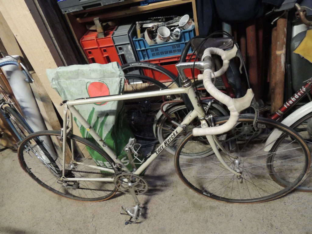 Eddy Merckx Professionnel Dscn2710