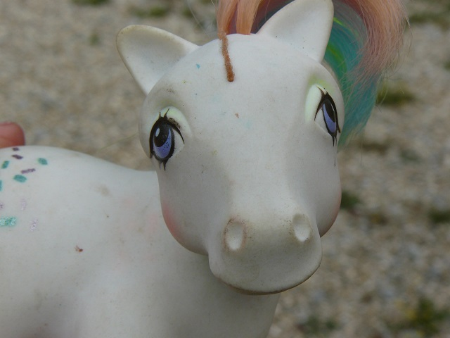 Mes customisations de poneys G1 - Page 3 P1140218