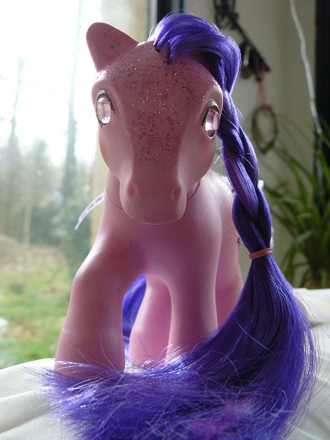 Mes customisations de poneys G1 - Page 4 P1150142