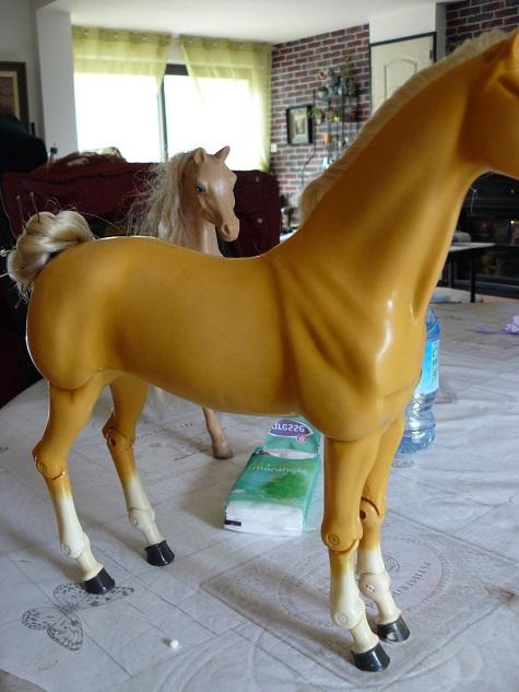 [PHOTOS] Mes restaurations de poney - Page 14 P1150318