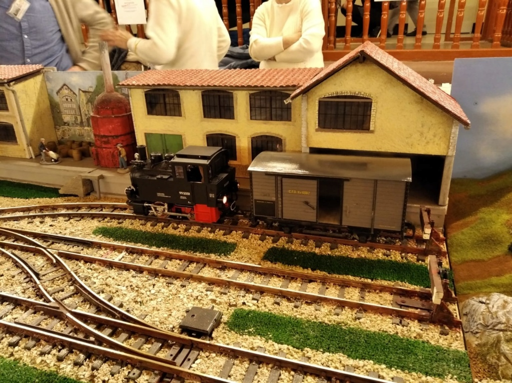 festa del tren Molins de rei 2020 (8 i 9 de febrer) - Página 3 Whatsa49