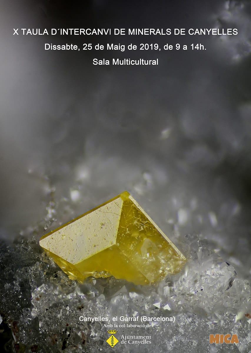 X Mesa de intercambio de minerales de Canyelles Img-2011