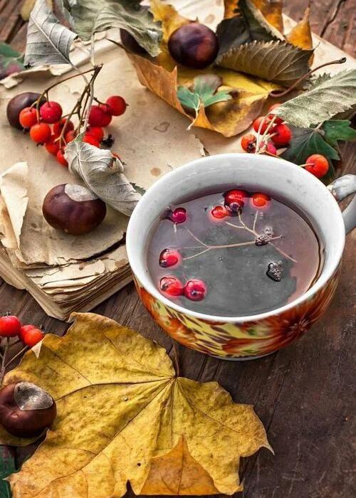 6 рецептов чая, согревающих сердце Oe0qpu10