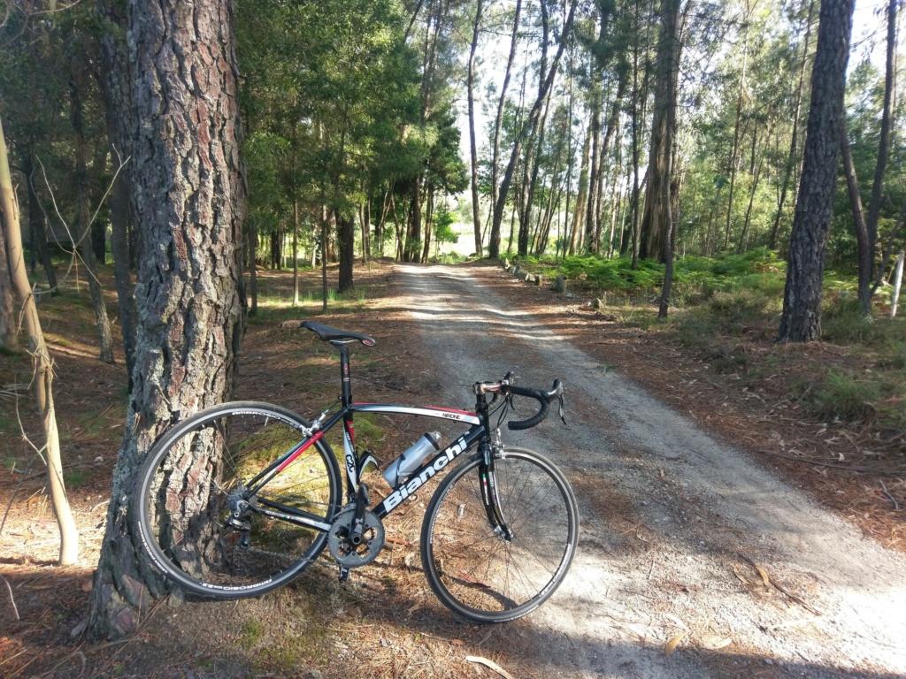 As minhas bicicletas Imag1445