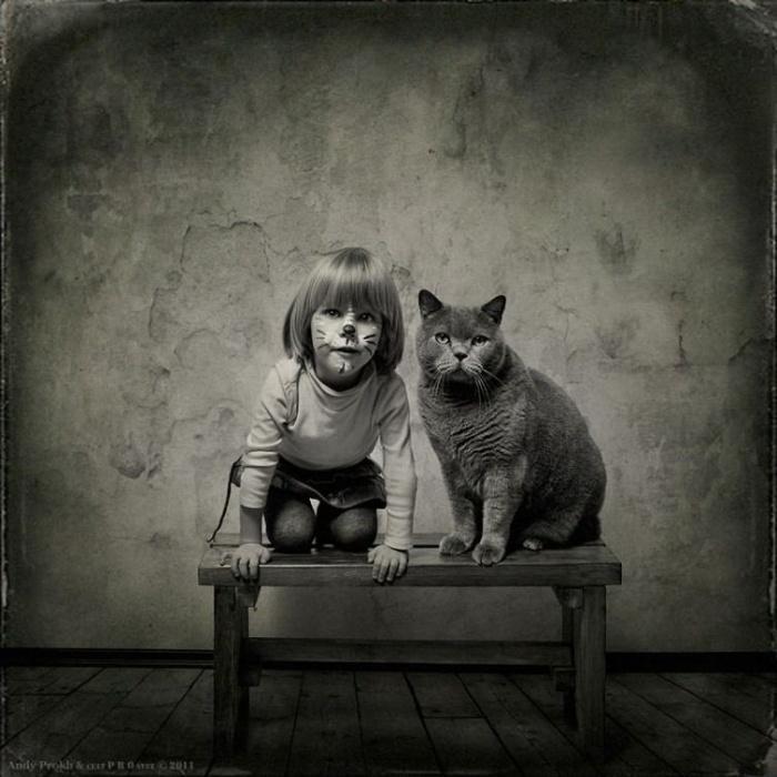 Всемирный День Кошек - Страница 13 65f47c10