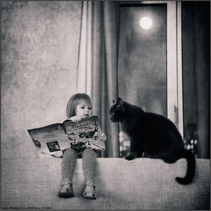 Всемирный День Кошек - Страница 15 Ff526010