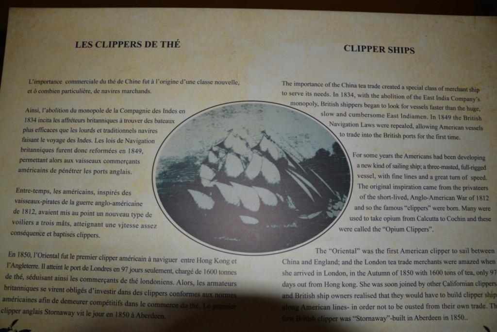 mon voyage a l'ile maurice - Page 6 Dsc_0419