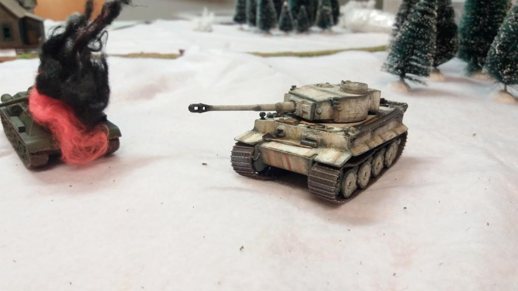 Phot char Tigre 20200143