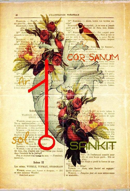 cor sanum -здоровое сердце автор Санкит 8zfpki10
