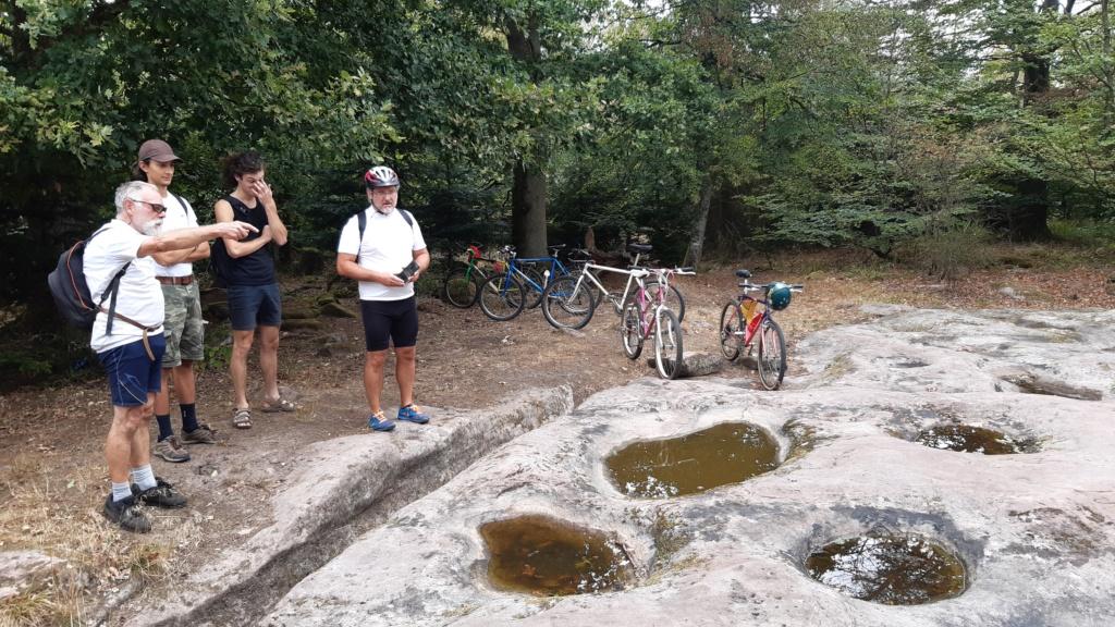 Alsace, banane à VTT à Saverne le 11 septembre 2020 : des Gogos en visite sur des sites Gallo Romains et + encore.... 20200911