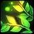Droguerie Plante11