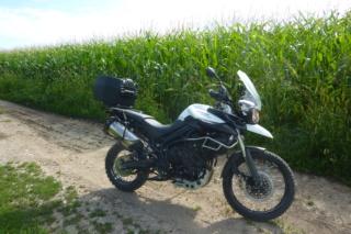 Ca roule en Alsace ? P1080511