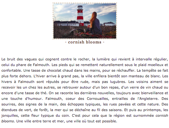Cornish Blooms Contex11