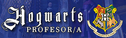 Profesor De Hogwarts