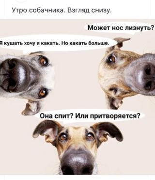 """Став """"Амулет для дружка"""" от Zlata Rune Img-4d10"""