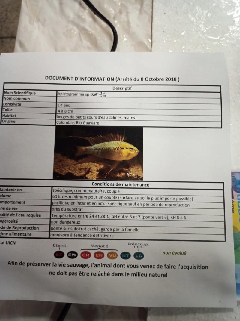 [PROJET] Bac communautaire amazonien 900L (Nouveaux arrivants) - Page 10 Fiche_10