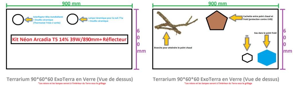 Aménagement Terrarium pour Pogona Terra11