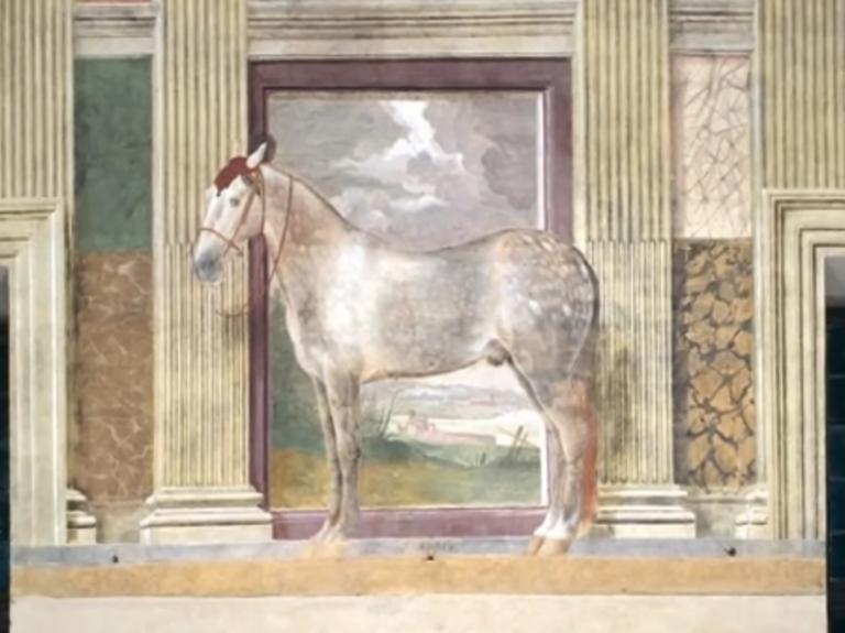 Palazzo Te di Mantova - la sala dei cavalli Dario-11
