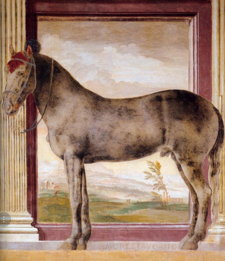 Palazzo Te di Mantova - la sala dei cavalli Morel-11
