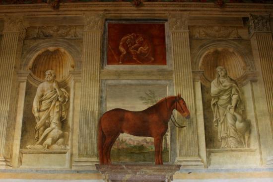 Palazzo Te di Mantova - la sala dei cavalli Sala-c10