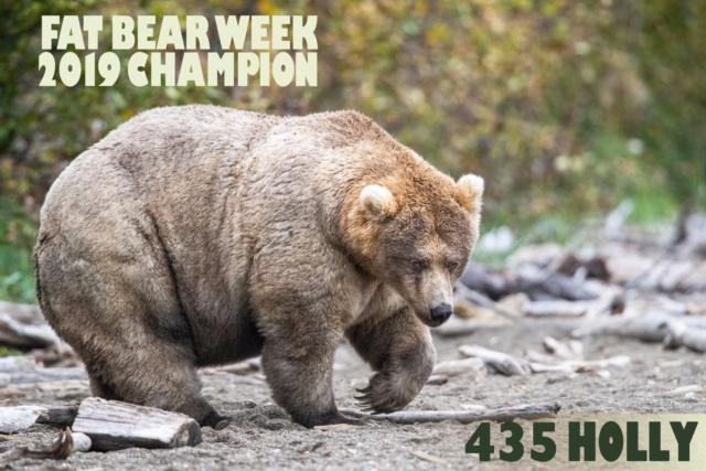 /ʕ •ᴥ•ʔ/ - Random Bear Facts! - ⧵ʕ•ᴥ• ʔ⧵ 71919210
