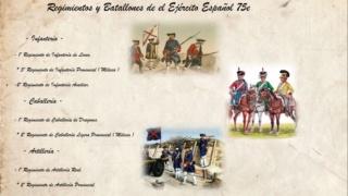 75-E EJÉRCITO ESPAÑOL Organi10