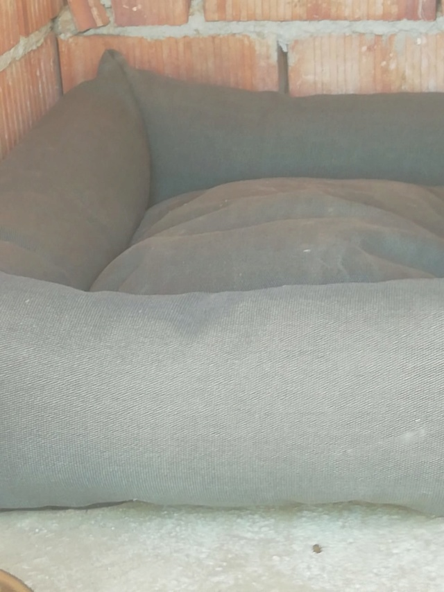 2 pallets voor van Asociacion Refugio libertad animal te Malaga 505b2c10