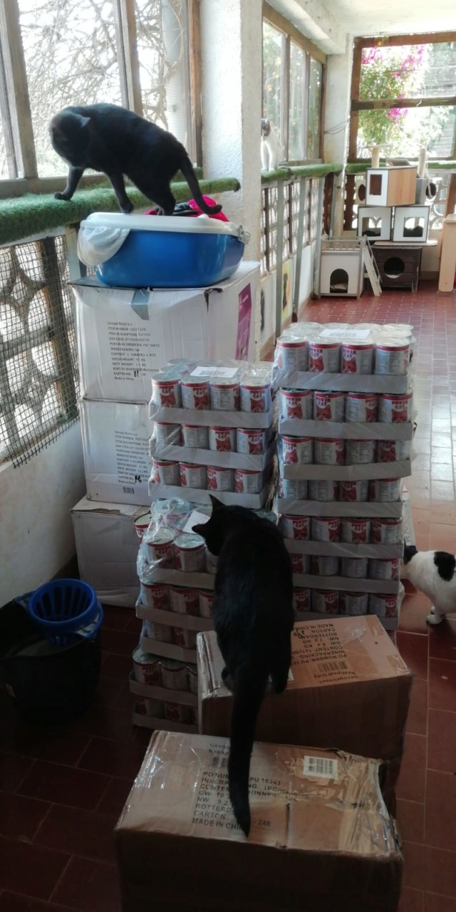 3 pallets voor Canis y Felis zijn aangekomen 66a7bd10