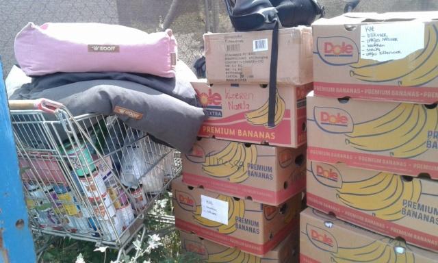 3 pallets voor Canis y Felis zijn aangekomen 96377810