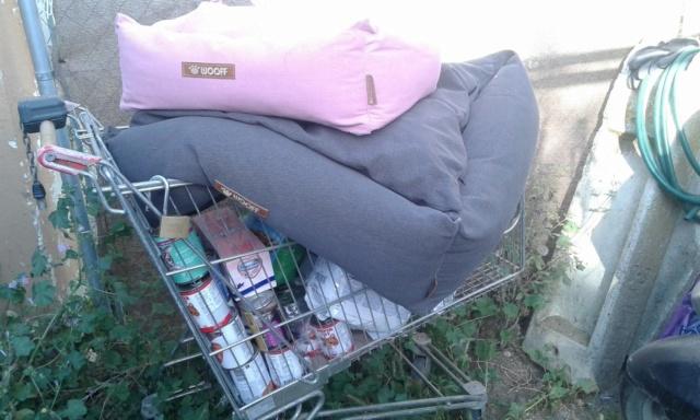 3 pallets voor Canis y Felis zijn aangekomen 96580510