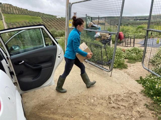 3 pallets voor Huellas con Esperanza 96681310