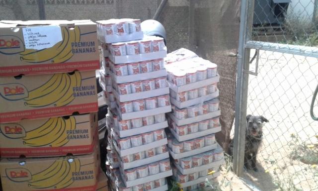 3 pallets voor Canis y Felis zijn aangekomen 97135310