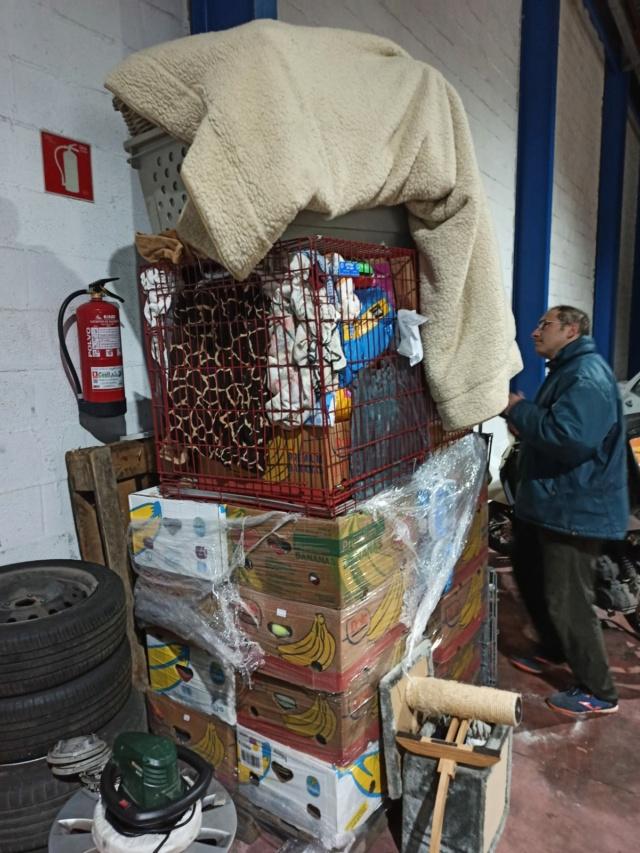 21 Dec - Pallet aangekomen bij Canis y Felis Canist14