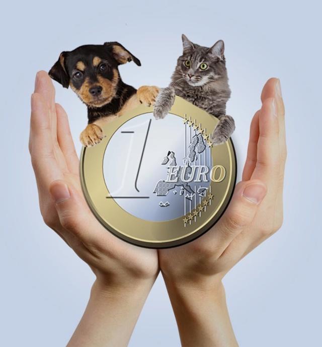 Euro sponsor Eurosp10